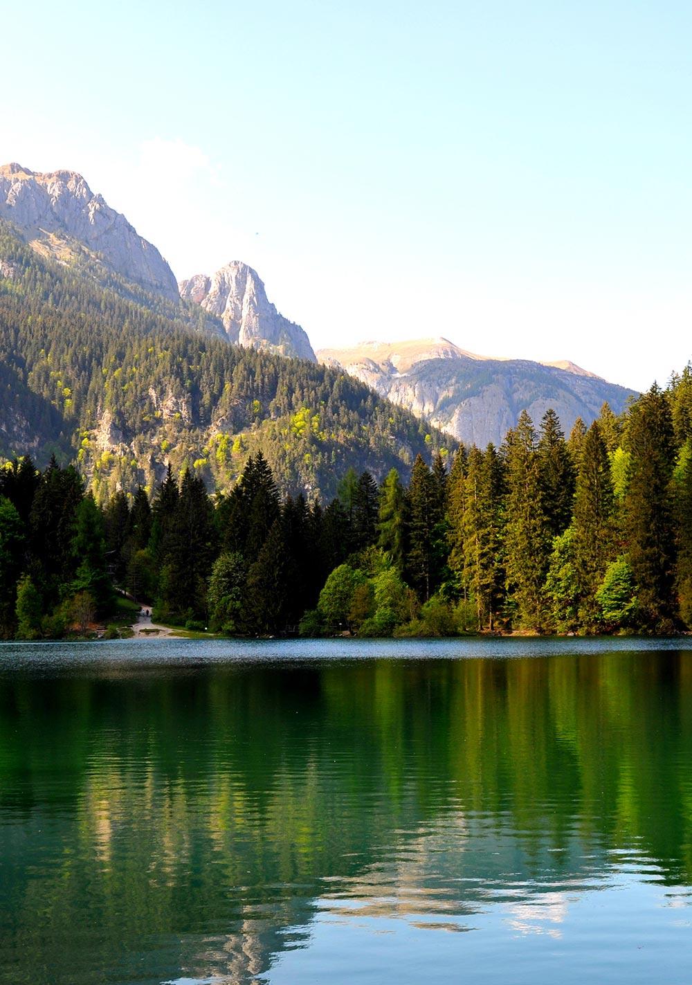 Chalet Tovel - Val di Non - Trentino